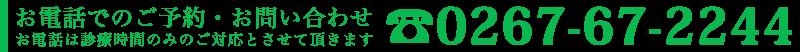 お電話でのご予約・お問い合わせ tel.0267-67-2244